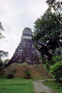 path Tikal